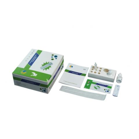Τέστ Kit άμεσου αποτελέσματος Γρίπης & Covid19 (Rapid) (20 tests)